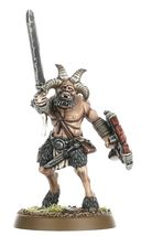 Warhammer Age of Sigmar. Beasts of Chaos. Start Collecting (70-79) — фото, картинка — 6