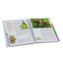 Энциклопедия здорового питания — фото, картинка — 2