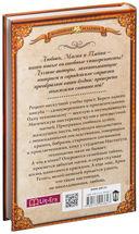 Маги начинают и выигрывают (Комплект из 4-х книг) — фото, картинка — 8