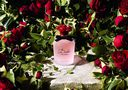 Парфюмерная вода для женщин Dolce & Gabbana