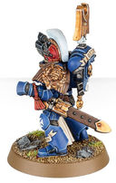 Warhammer 40.000. Space Marines. Sternguard Veteran Squad (48-19) — фото, картинка — 4